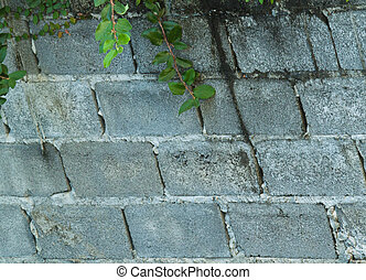 Square white brick wall background - Square white brick wall...