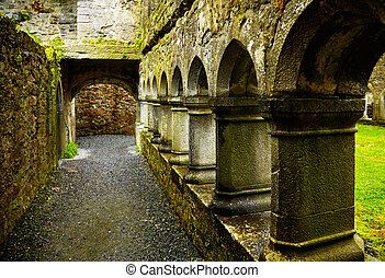 Ross Friary - Interior of the Ross Friary in summertime on a...