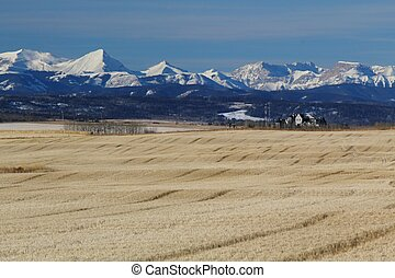 Autumn in Alberta - A farm at the foothills of Alberta,...