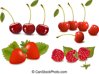 set of cherries - Big group of fresh berries Vector...