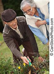 seniors in the garden