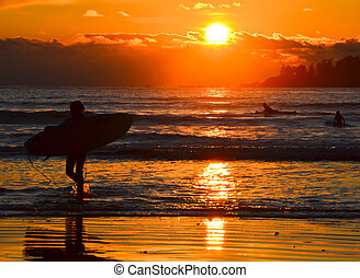Surfers at sunset in Tofino BC - A surfer is heading home at...