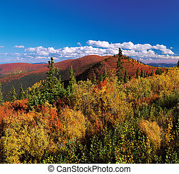 Yukon Mountains in the fall colours