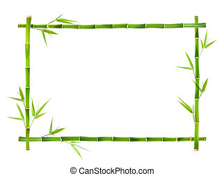 Bamboo frames leaves