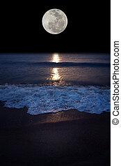 Full moon - Romantic tropical beach with beautiful full moon