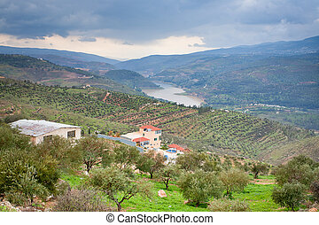 mountain valley and river in Jordan - panorama of mountain...