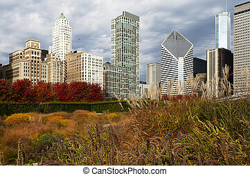 Skyscrapers in Chicago in autumn