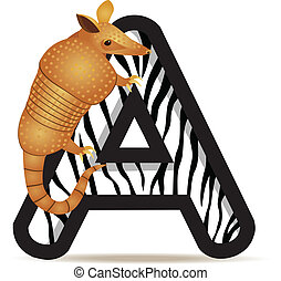 Armadillo with alphabet A