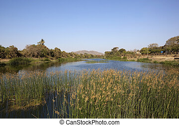 gujarat landscape - a beautiful aquatic landscape with...