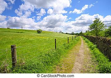 Yorkshire spring landscape