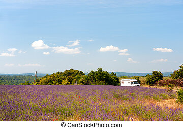 Mobile home in French lavender fields - Traveling with...
