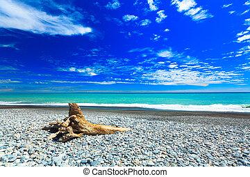 Tasman sea - Coast of the Tasman sea