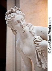 Venus - The perfect feminine beauty in this copy of a...