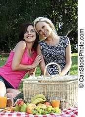 Gorgeous Smiling Women  Friends at Picnic