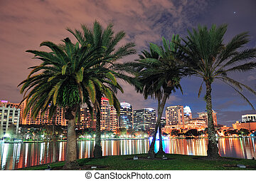 Orlando - Oconut tree and Orlando downtown skyline over Lake...