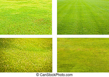 Four styles of grass field