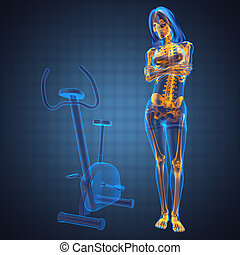 woman  radiography scan in gym room made in 3D
