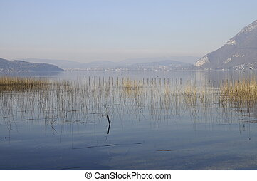 Lake annecy, mountains and reed bed