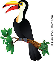 funny toucan bird - illustration of funny toucan bird