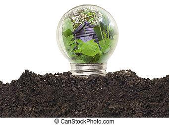 bombilla, ecológico, concepto,  -