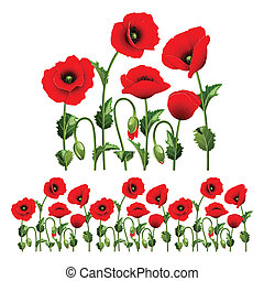 Border from poppies. - Border from red poppies.(can be...