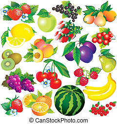 Fruits - Juicy Healthy food Vector art-illustration on a...