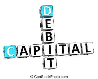 3D Capital Debit Crossword text