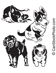 Collection of dogs The Black-and-white illustration