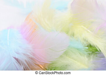 Some colored feathers for background or texture