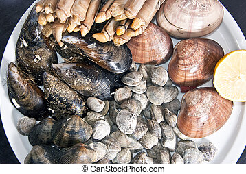 shellfish - acid uric food