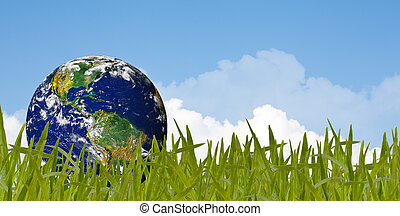 Environment concept, globe in the grass