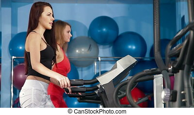 Fitness Club - Two Young Women Practicing In The Gym On...