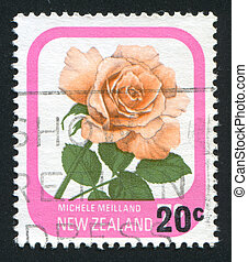 flower Rose Michele - NEW ZEALAND - CIRCA 1975: stamp...