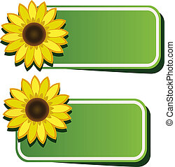 Vector stickers and sunflower