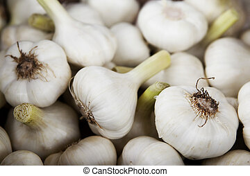 Fresh garlic - Close up of fresh garlic cloves
