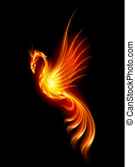 Burning phoenix - Burning Phoenix Illustration isolated over...