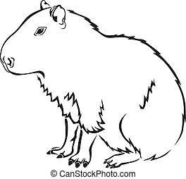 capybara - Black-and-white contour image of the capybara