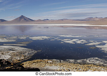 Lagoon and mountain in Altiplano