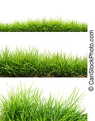 fresh spring green grass - three style fresh spring green...