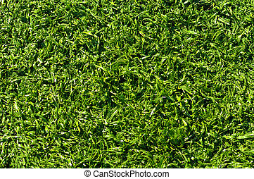 Fake Grass used on sports fields for soccer, baseball, golf...