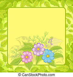 Background, flowers cosmos and frame