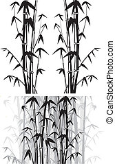 bamboo background - black and white bamboo bush and forest,...