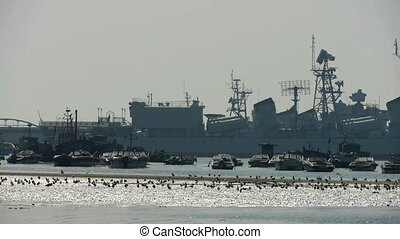 Warship moored in port,seagull habitat on sea,Yachts Vessels...