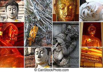 Buddha Status - Collage of Buddha Status at Ayutthaya city...