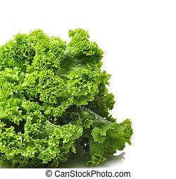 Mustard Green Leaves - Fresh Curly Mustard Green Leaves