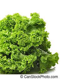 mostaza, verde, hojas