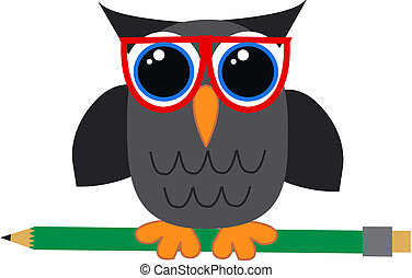 a student or teacher owl