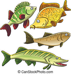 Fish Collection - cartoon illustration of freshwater fish
