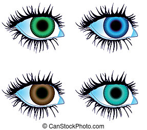 Eyes Colored - Illustration vector Eyes Colored