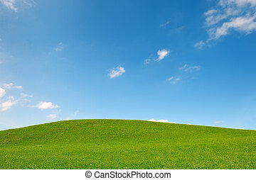 field of gras and blue sky